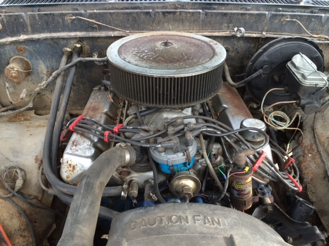 1979 Ford F150 Custom Engine